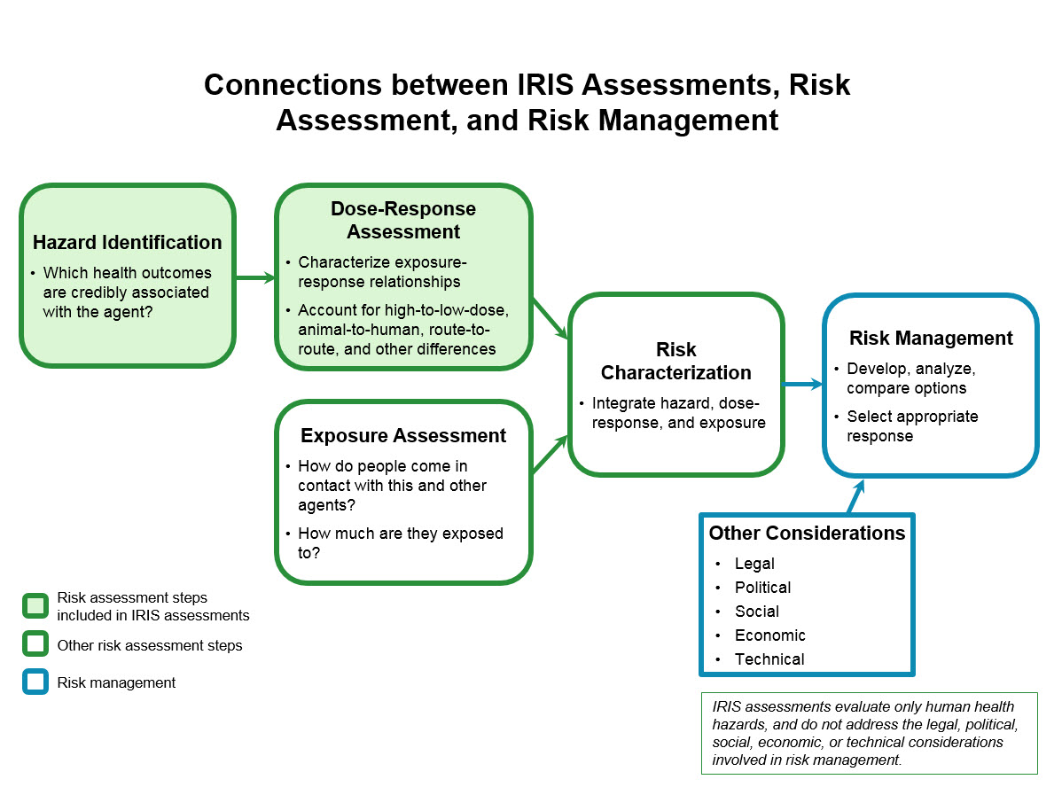 Illustration Of The First 2 Steps Of A Human Health Risk Assessment To Risk  Management.