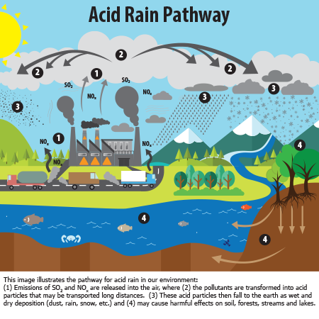 the problem of acid rain that has plagued earth for years Air pollution from coal-fired power plants is linked with asthma heart and lung ailments, neurological problems, acid rain warming the earth's surface.