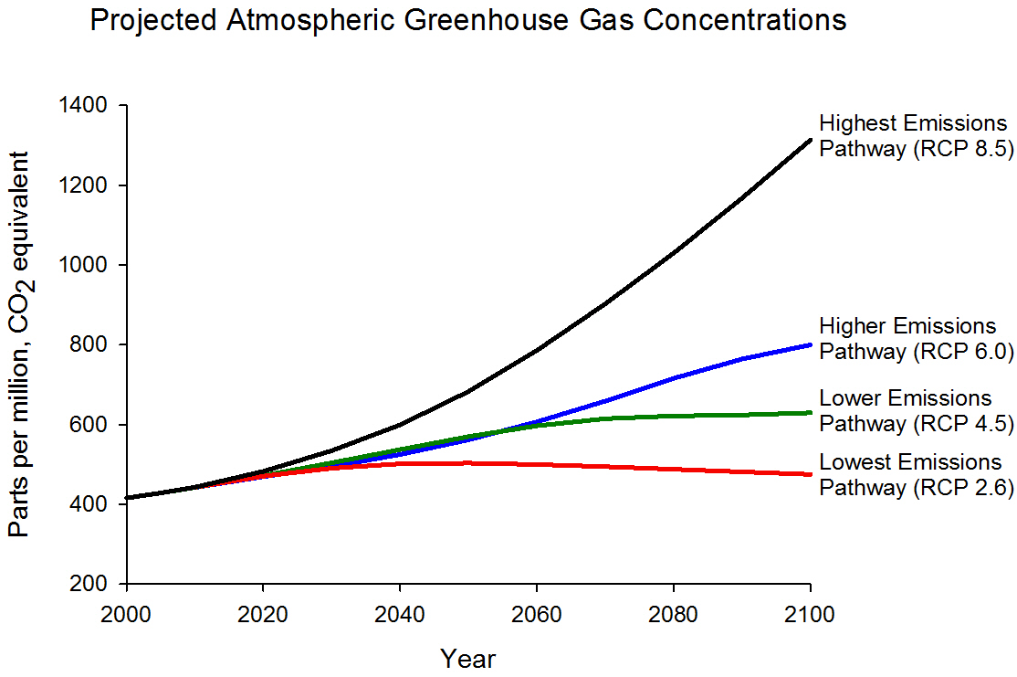 Argument Essay Thesis Statement Graph Displaying Projected Ghg Concentrations For Four Different Emissions  Scenarios Highest Rcp  This Figure Shows Projected Greenhouse Gas  Best Web Content Writing Services also Thesis Statement Essays Future Of Climate Change  Climate Change Science  Us Epa How To Make A Thesis Statement For An Essay