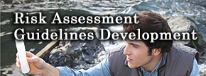 Risk Assessment Guidelines Development