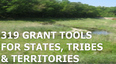 319 grant tools for states tribes and territories