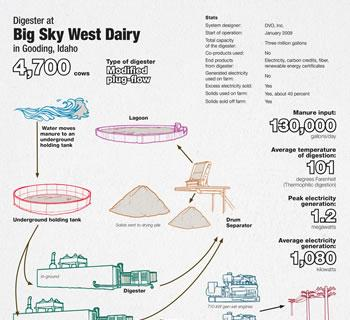 Big Sky West Dairy Infographic