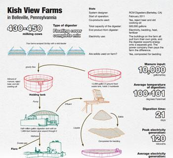 Kish View Farms Infographic