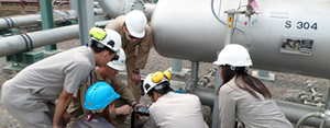 Natural gas emissions inspection