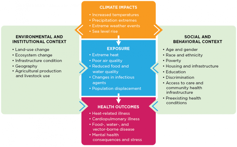 Figure 1. Climate Change and Health Pathways Web