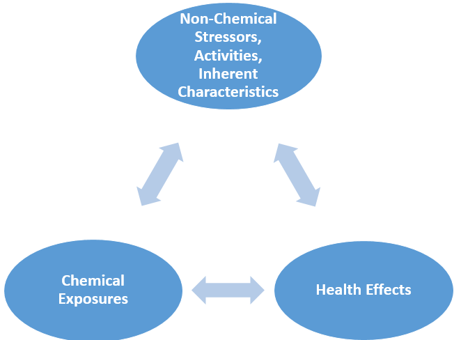 Diagram 1. Chemical exposures and health effects are influenced and modified by non-chemical stressors, activities, and inherent characteristics.