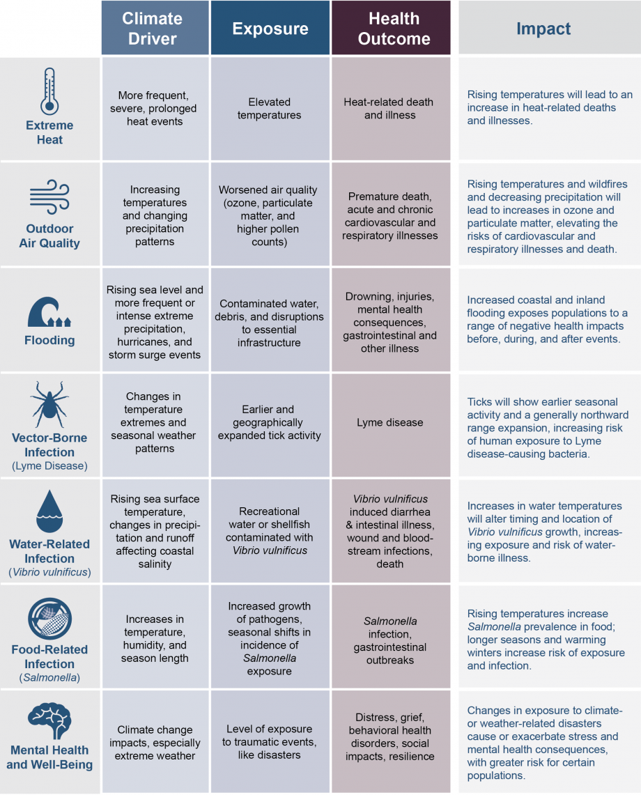 Diagram showing specific examples of how climate change can affect human health, now and in the future. These effects could occur at local, regional, or national scales. Examples include extreme heat, outdoor air quality, flooding, & vector-borne disease.