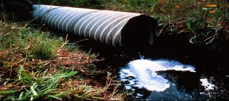 Illegal sewer outfall pipe into wetland