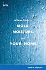 A picture of the Mold guide PDF document