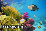 icon for the ecosystems sector